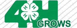 County 4-H members to take part in National 4-H Week activities